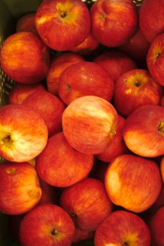 Apfel Reglindis